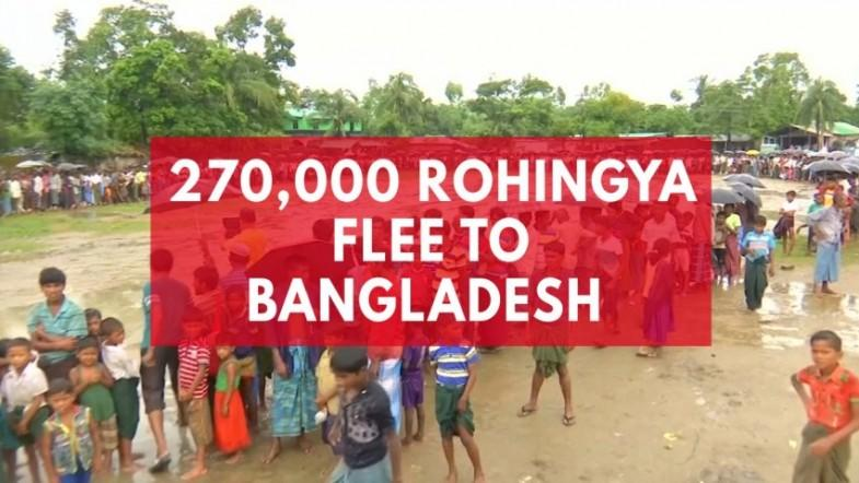 270,000 Rohingya flee to Bangladesh after weeks of violence