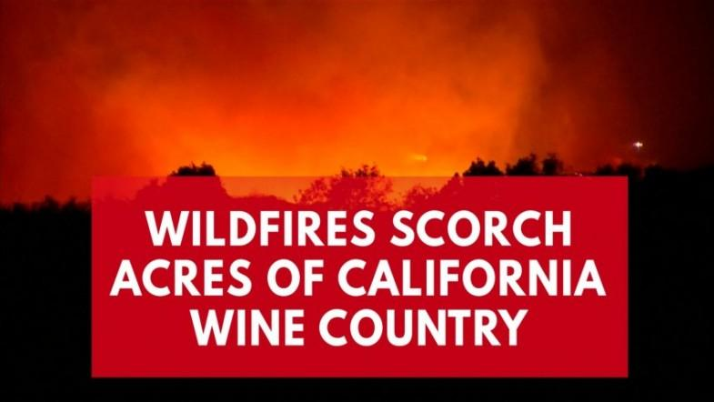 Deadly wildfires sweep through California wine country