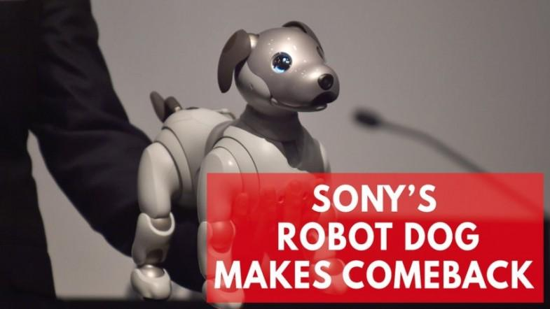 Sonys new Aibo robot dog is the cutest in AI technology