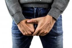 penis,