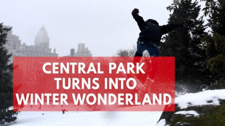 Snowstorm creates winter wonderland in Central Park