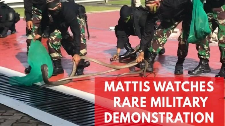 James Mattis watches Indonesian forces drink snake blood, walk on fire and break bricks