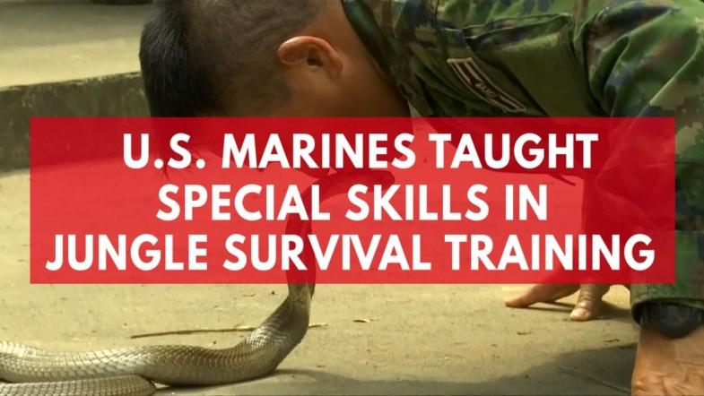 U.S. marines taught how to drink animal blood in jungle survival training