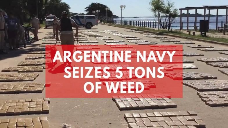 Argentine Navy makes biggest cannabis bust in countrys history