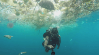 A clip from the video Rich Horner posted about plastic waste accumulation in the Manta Point, Bali, Indonesia.