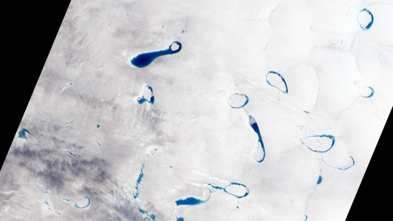 Ice sheets in Greenland destabilized by chain reaction from melt lake networks