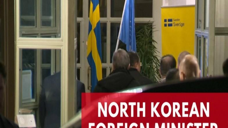 North Korean Foreign Minister Ri Yong Ho arrives in Sweden