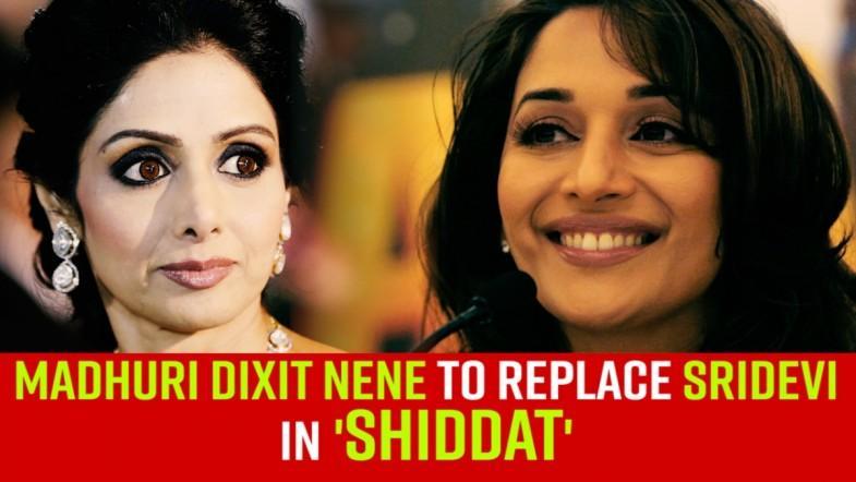 Madhuri Dixit Nene will replace Sridevi in Shiddat