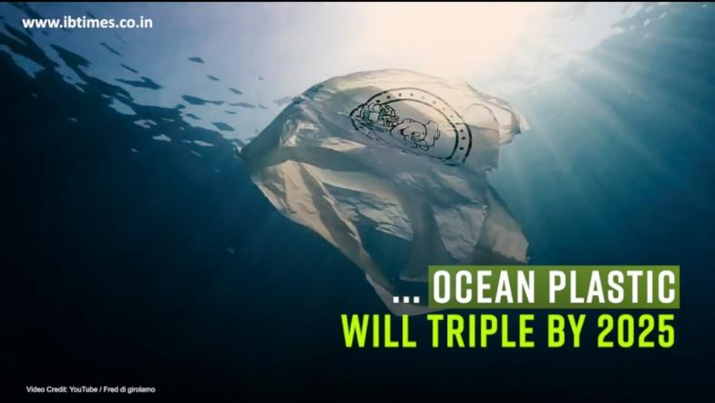Plastic oceans predicted to triple by 2025