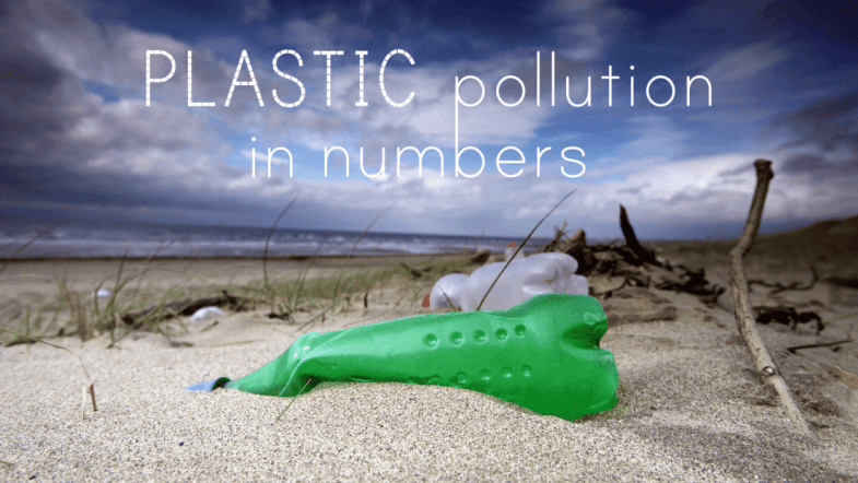 How plastic waste is killing the oceans