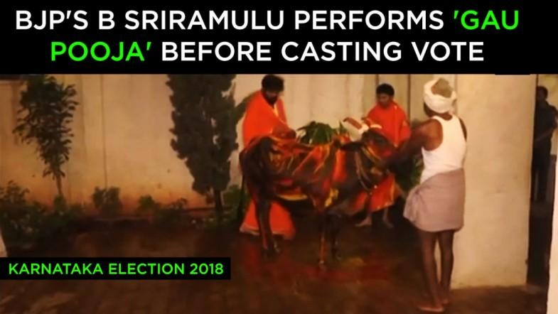 Watch: BJPs B Sriramulu performs gau pooja before casting vote