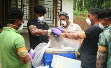 Nipah virus outbreak in Kerala