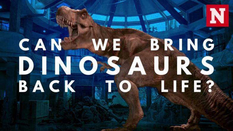 Can We Bring Dinosaurs Back To Life?