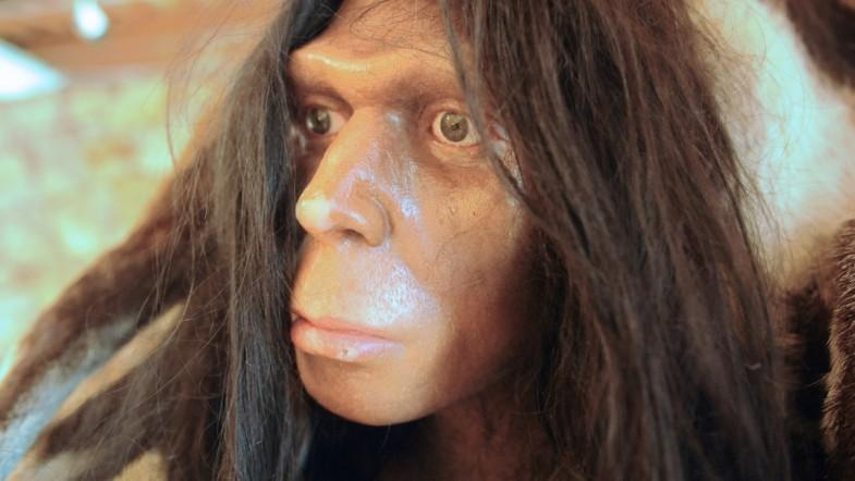 Five Surprising Facts About Human Evolution