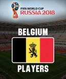 Belgium at Fifa World Cup