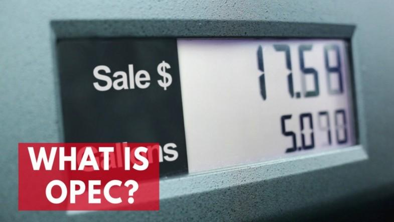 What is OPEC?