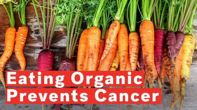 Eating Organic Food Could Prevent Cancer