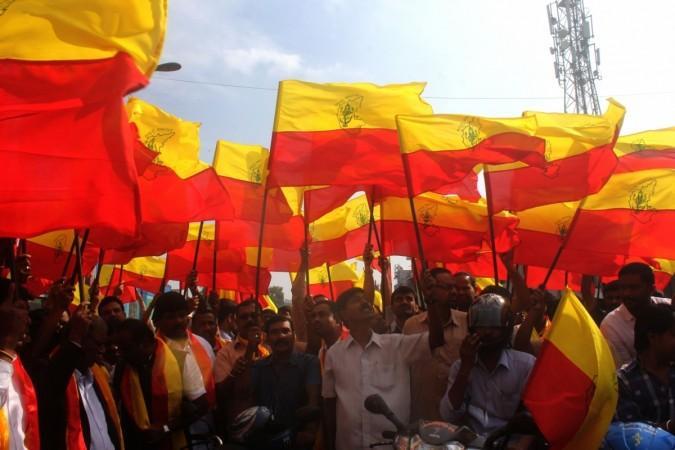 Karnataka flag Kannada Rajyotsav