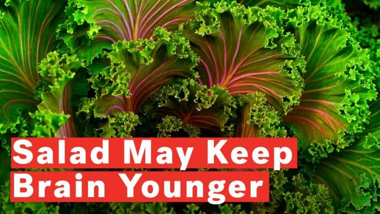 Eating Salad Keeps Brain 11 Years Younger
