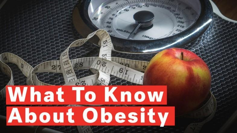 7 Things To Know About Obesity
