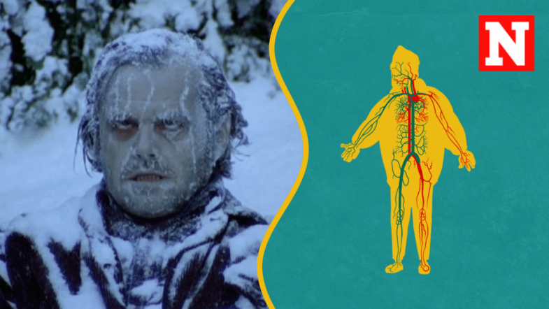 What Happens To Your Body When Youre Cold