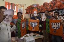 BJP lok sabha elections