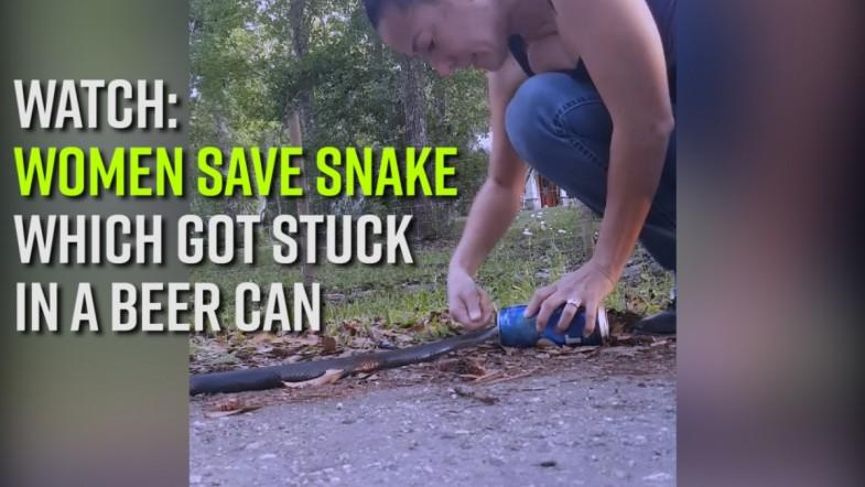 Watch: Women save snake which got stuck in a beer can
