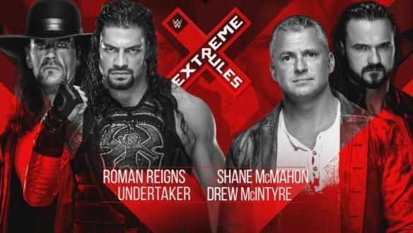 The Undertaker Shane McMahon
