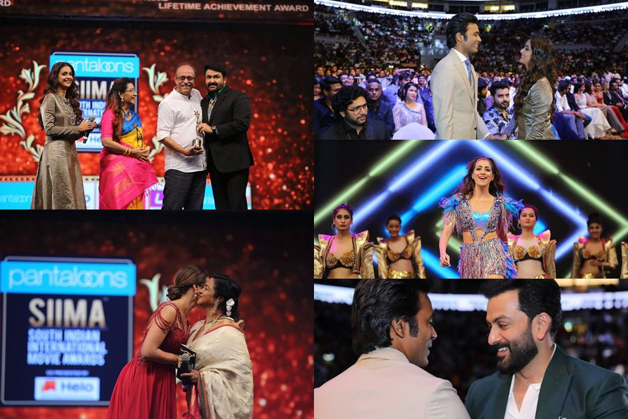 SIIMA Awards: Dhanush, Trisha, Mohanlal honoured in Doha