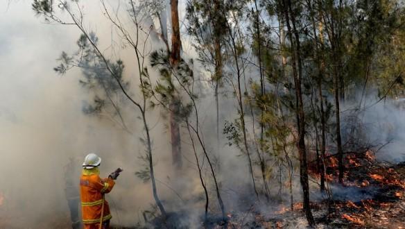 澳大利亚的火焰