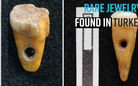 880年,用象牙的牙齿和珠宝和珠宝