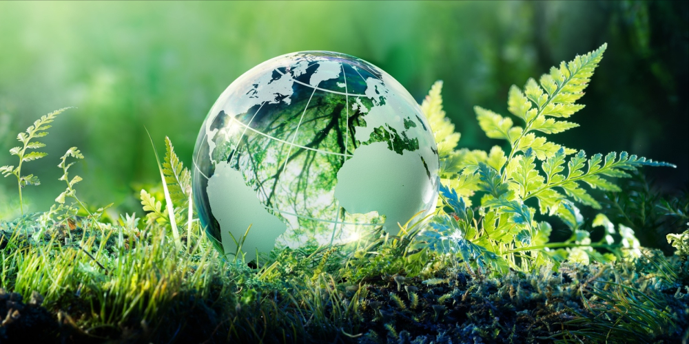 World leaders drew 2020 deadline to save earth; set 20 goals, achieved none in 10 years