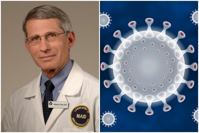 Anthony Fauci coronavirus
