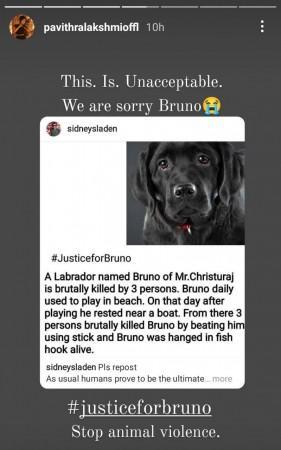 Bruno Death