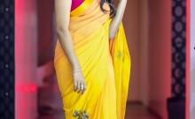 Losliya in Saree